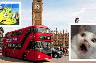 Новый британский мем: автобусы Лондона начали предупреждать о движении, когда и так уже едут