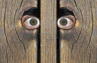 Пара год прятала дом за гаражной дверью, но соседи их сдали…