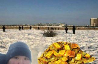 Золотая лихорадка в Якутии: как авария самолета с драгоценными плитками осчастливила местных жителей